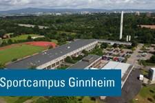 Neues vom Sportcampus Ginnheim